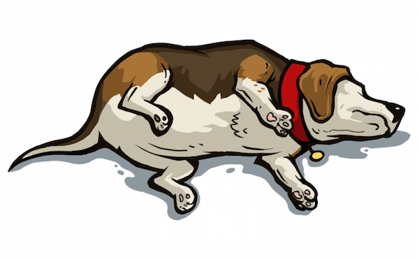 sleeping dog clipart  OurClipart
