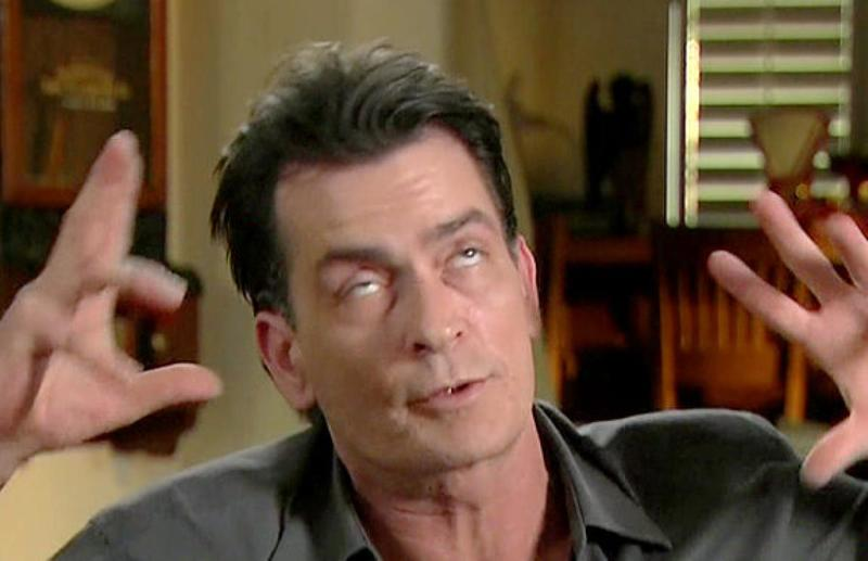 Charlie Sheen Hotel Wrecker