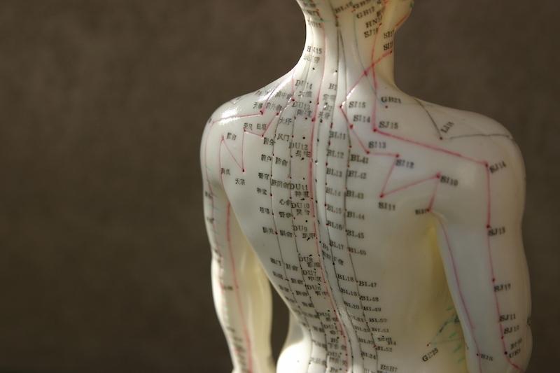 AcupunctureDummy_Acupunctureinset