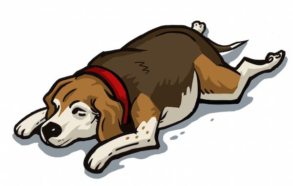 TheSuperman_DogSleep