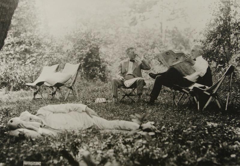 Edison Napping Near Harding