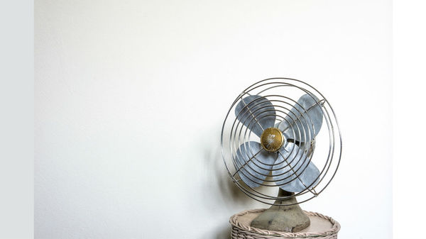 Why Do So Many South Koreans Fear Sleeping Near Fans? | Van Winkle's