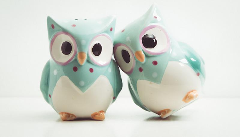 OwlCuddle_CONTENT